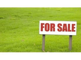 Ofertă vânzare teren situat în extravilan